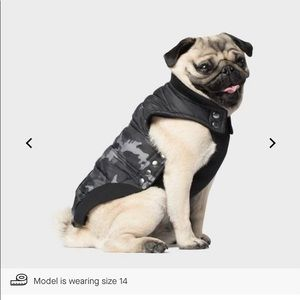 Canada Pooch Summit Stretch Vest in size 10